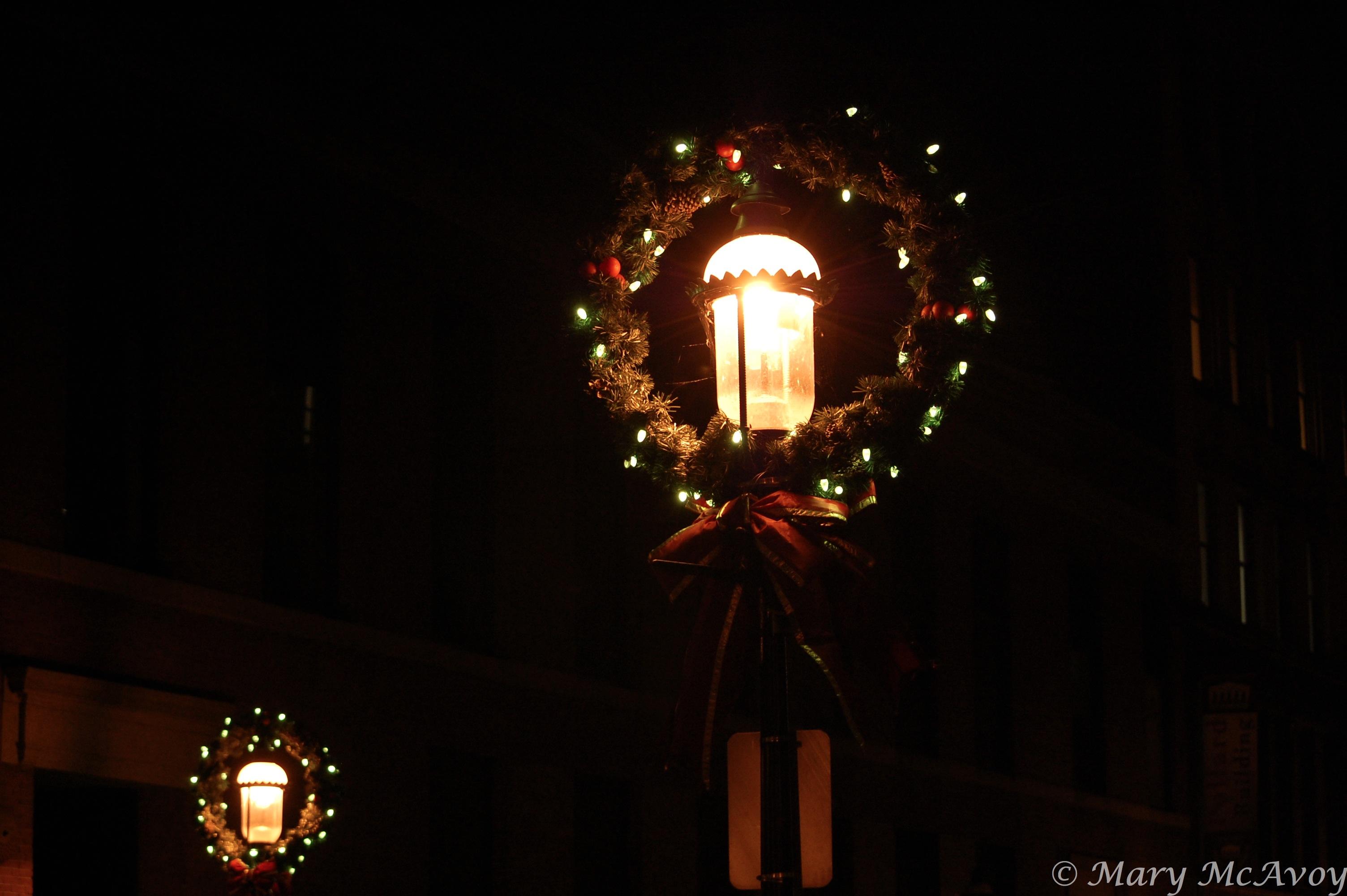 christmas trees lowell ma