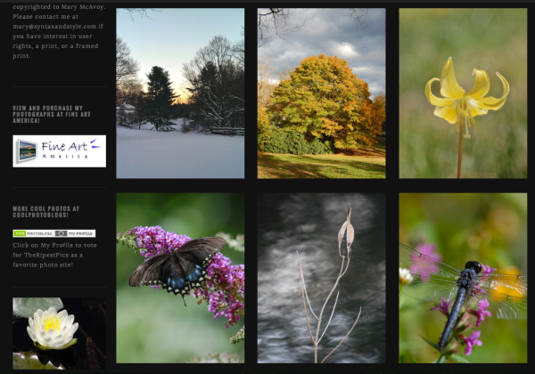 TheRipestPics on WordPress and Gridspace