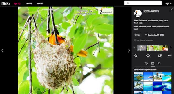 my photo on infoway
