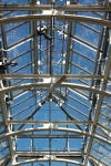 Tower Hill Botanic Garden glass ceiling of the Limonaia