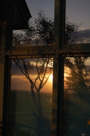 reflection of sunset in window at Tower Hill Botanic Garden