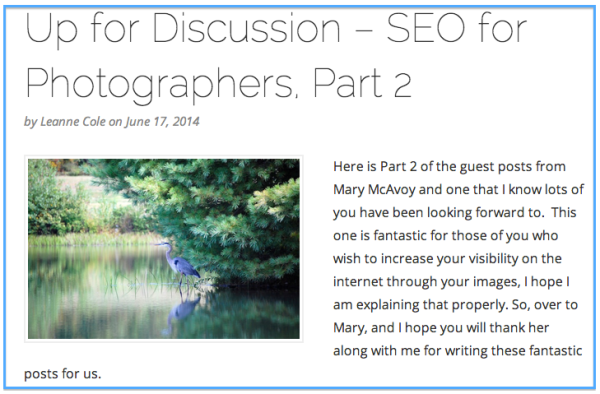 Mary McAvoy's guest post headline about SEO on the Leanne Cole Photography site