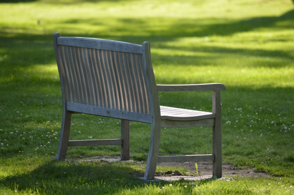 park bench in the evening sunlight